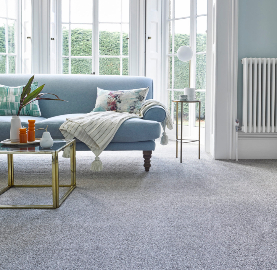 Bright room with grey carpets and a blue couch